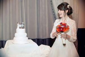 Bride in Clontarf Castle