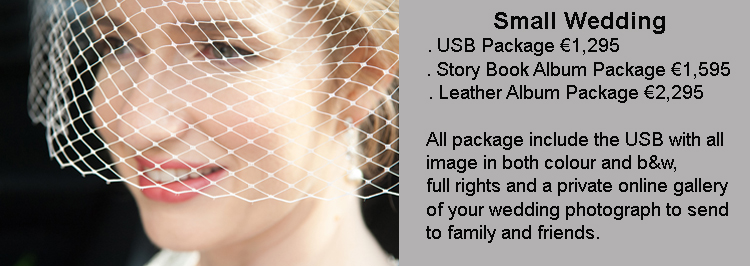 Small Wedding Photography Prices